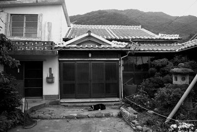 iwaijima 057maki.jpg