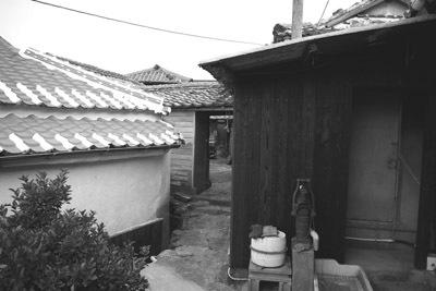 iwaijima 060wakimichi.jpg